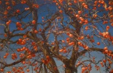 arbre-kaki